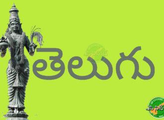 Literary walk to promote Telugu