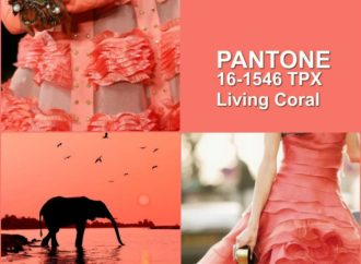 """""""Living Coral"""" color of the year -2019"""
