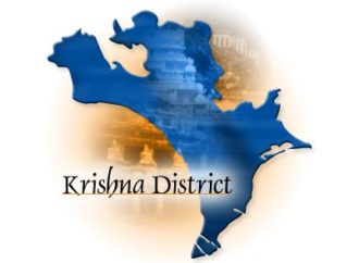 Krishna District Elections 2019